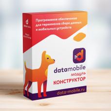 ПО DataMobile, модуль Конструктор